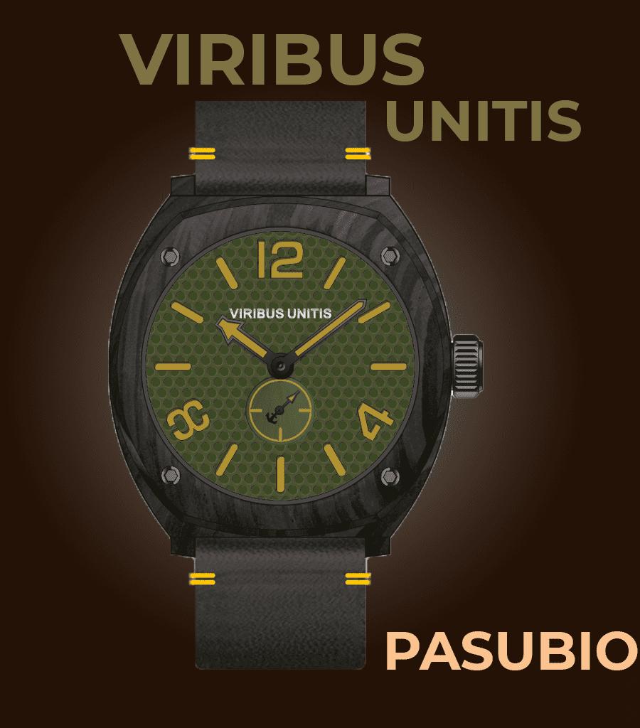 Viribus Unitis Pasubio