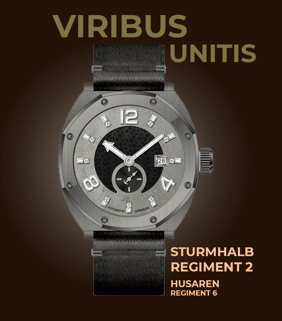 Viribus Unitis Sturm-Halbregiment 2 Husarenregiment 6